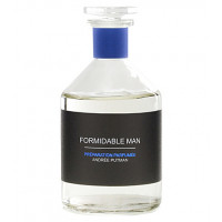 Andree Putman Formidable 100 ml (тестер)